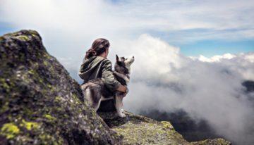 Financial Benefits of Dog Walking