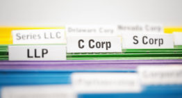 Why Should I File My Professional Business As An S Corporation In California?