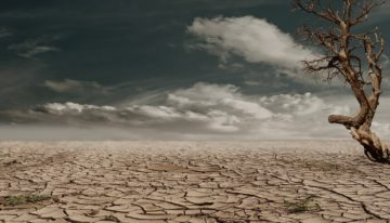 How climate change will affect UK business and economy?